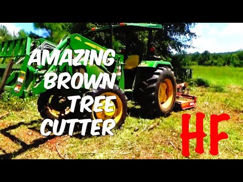 AMAZING BROWN TREE CUTTER
