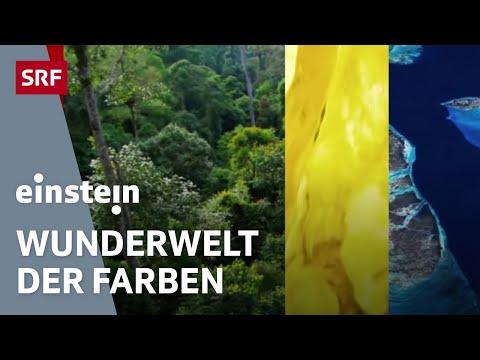 «Einstein» untersucht die Welt der Farben - Einstein Spezial vom 1.9.2016