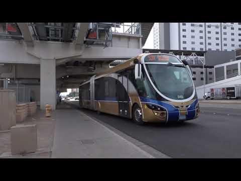 Buses in Las Vegas, USA