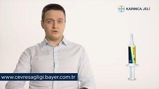 Bayer Karınca Jeli