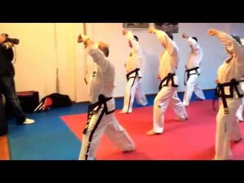 Master Vasilis Alexandris - ITF Taekwon-do technical seminar (Tirana)