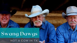 Not A Cow In TX  - Swang Dawgs - Duke Davis