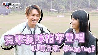 突擊捉陳柏宇重唱IU演唱會韓文歌《Nagging》!| 韓星.追星 | Lilliansssssss