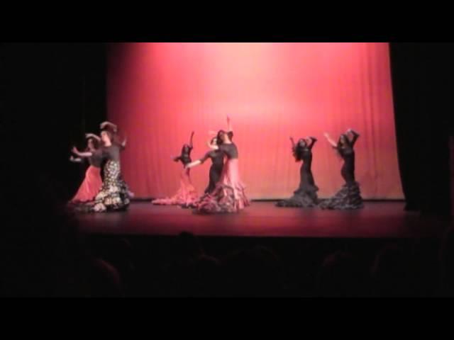 I Gala Benéfica Día Internacional de la Danza 2014