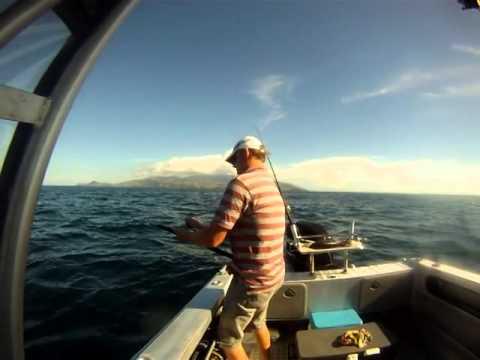 Fishing Channel Island