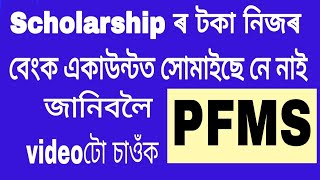 how to check scholarship, Pension credit status online. PFMS . Assamese video