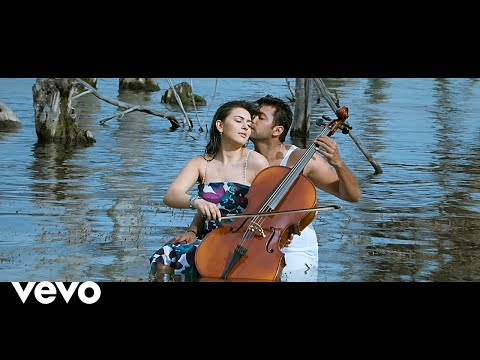 Engeyum Kaadhal - Thee Illai Video | Jayam Ravi, Hansika | Harris