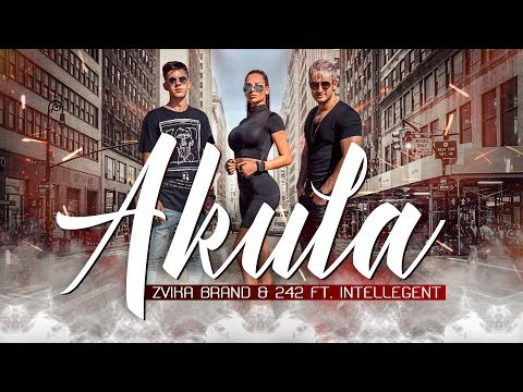 Смотреть клип Zvika Brand & 242 Ft. Intellegent - Akula