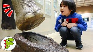 おでかけ 東山動物園 いろいろなどうぶつをみつけよう! トイキッズ