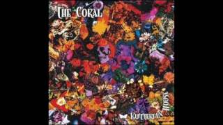 The Coral - Falling All Around You