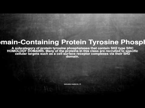 Medical vocabulary: What does SH2 Domain-Containing Protein Tyrosine Phosphatases mean