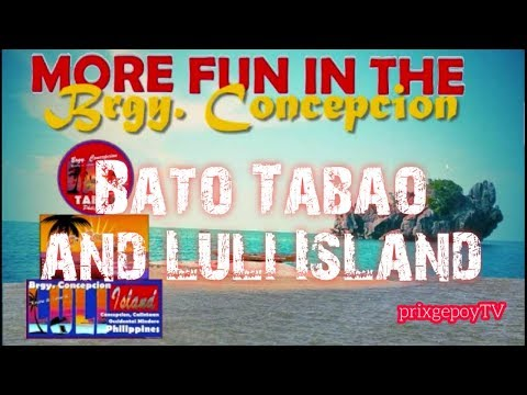 Brgy  Concepcion Calintaan Occidental Mindoro Tourism