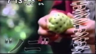 テレビ番組で紹介されたノニ