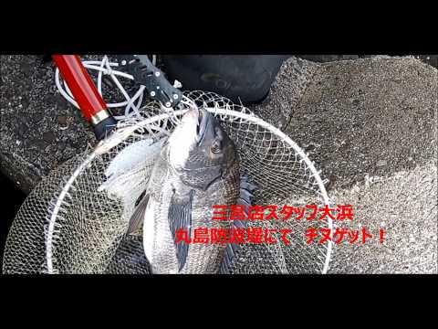 Fishingmax三宮店 20190221丸島のチヌ