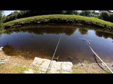 SOUTH FLORIDA SNAKEHEAD FISHING - Matt