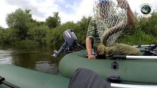 Сплав по реке Преголя ! Рыбалка в Калининграде !