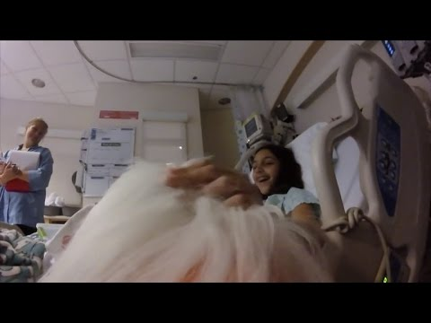See The Joy This GoPro Wearing Therapy Dog Brings at Children's Hospital