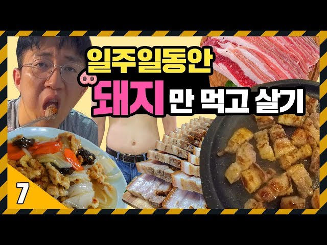 일주일동안 돼지 요리만 먹다가 돼지되는 영상 [ 7일 동안 돼지만 먹고 살기 ] 71530 X