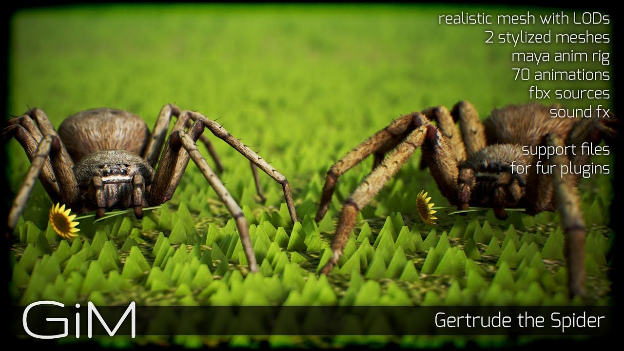 free download]:animal - spider with 2 meshes and 66 animations