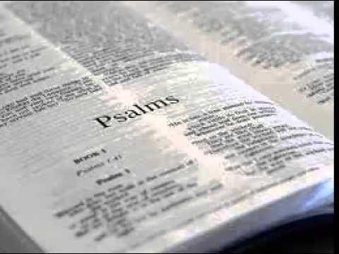 Psalms 21 - New International Version NIV Dramatized Audio Bible