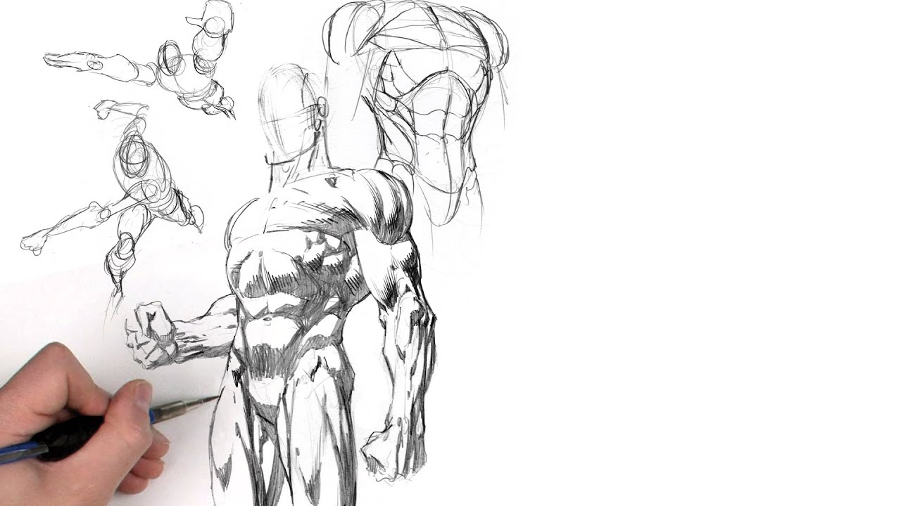 Dynamic Figure Drawing: The Body with David Finch