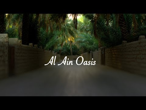 Alain Oasis - walkthrough