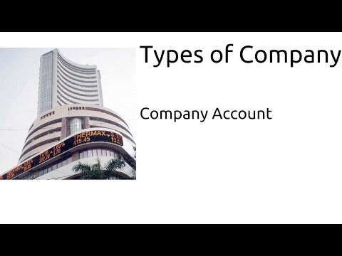 Types of Company | Company Account | CA CPT | CS & CMA Foundation | Class12
