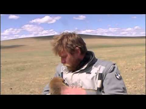 Long Way Round - puppy & Ewan McGregor - YouTube