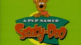 A Pup Named Scooby Doo - Instrumental Karaoke Intro