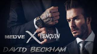 MEDVE x PENGUIN - David Beckham