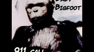 911 Bigfoot baby call & Car lot ravaged by unknown beast!
