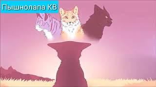 Коты-Воители:Держи