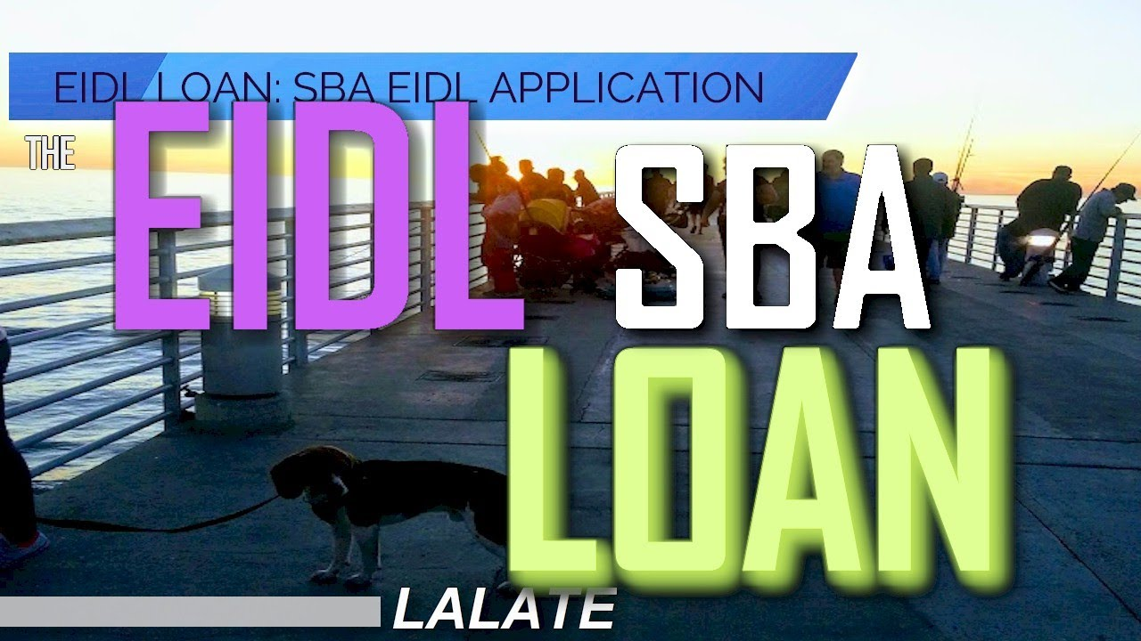Download EIDL Loan SBA Collateral Bombshell: You Rush to RETURN ALL EIDL Loan Money ASAP or LOWER IT to $25K!