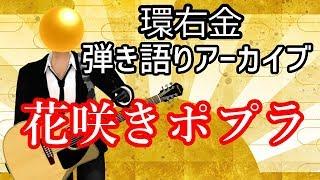 【環右金】花咲きポプラ【弾き語りアーカイブ】
