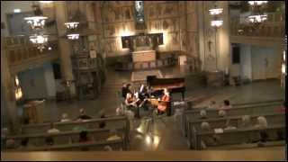 Bedřich Smetana: Piano trio g minor op. 15: 3. Finale - Presto