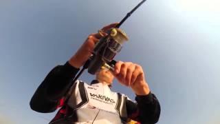 Morris VARIVAS Monofilament Fishing Line MistGrey 80lb 600m 4513498002747 for sale online