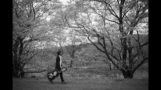 Download lagu Pohon Tua - Matahari Terbit (Official Music Video) Mp3