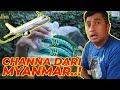 CHANNA BARU, IMPORT DARI MYANMAR..!