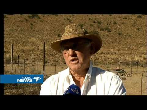 E Cape farmers reeling from impact of a drought