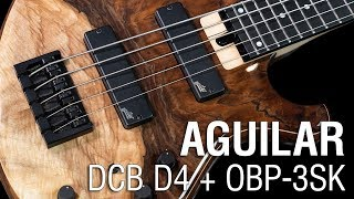 Aguilar DCB D4 + OBP-3SK // Maruszczyk Frog Omega 5a