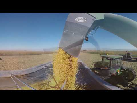 360º Farm Tour: Harvesting the Corn | #360Corn
