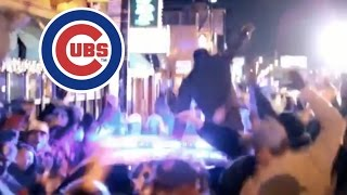 CUBS WIN THE WORLD SERIES!!!!!! CRAZY FAN REACTION!!!