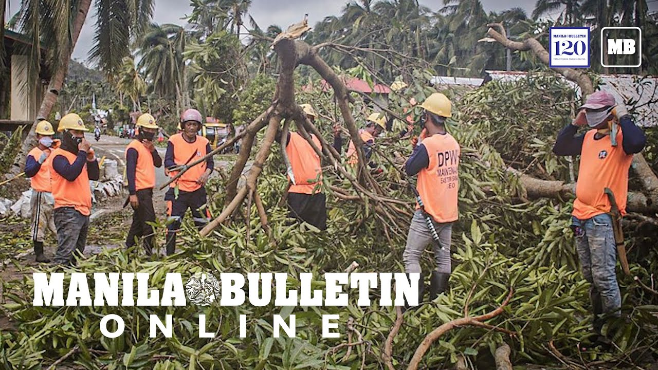 Typhoon 'Ambo' left agriculture sector with minimal damage, says DA