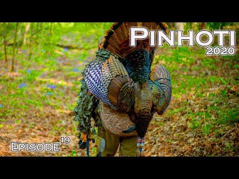 PUBLIC LAND GOBBLER at the BUZZER | ILLINOIS TURKEY HUNTING | MidWest ROADTRIP- Pinhoti 2020