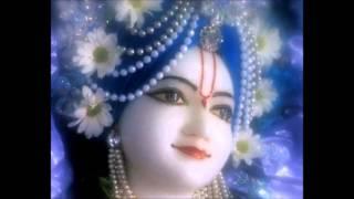 Akrodha Paramananda by HH Radhanath Swami