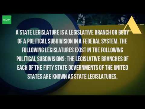 What Is The State Legislature?