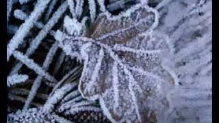 Winter Light Lyrics
