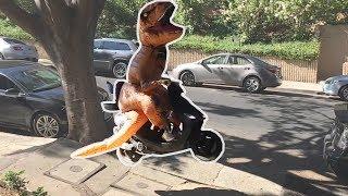 T-Rex Suit Prank! Video