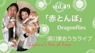vol.49「赤とんぼ」Dragonflies