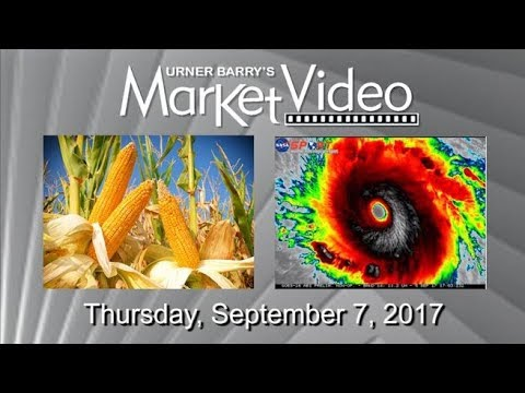 Crop Progress; Miami Seafood Industry Prepares for Irma; Chicken Tenders Analysis